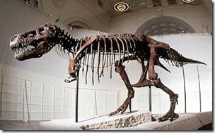 Did drunken Northwestern University grad students throw things at the Field Museum's famous Sue dinosaur?